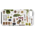 Rejilla sana de la comida en un fondo blanco iPhone 5 funda