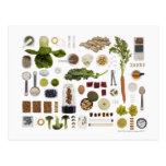 Rejilla sana de la comida en un fondo blanco postal