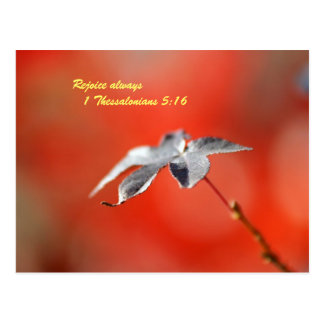 Rejoice always  1 Thessalonians 5:16 Post Cards