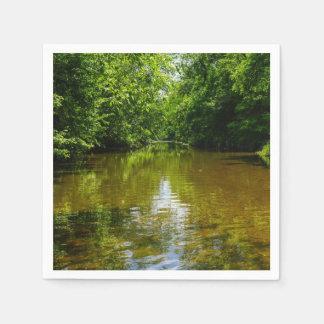 Relajación en The Creek Servilleta De Papel