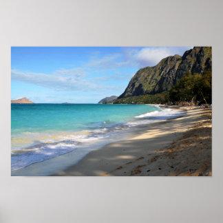 Relaje la impresión hawaiana del estilo impresiones