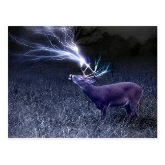 Relámpago de los ciervos tarjetas postales
