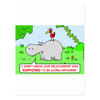 relationship going anywhere hippo bird postcard