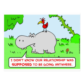 relationship going anywhere hippo bird postcard