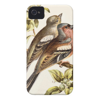 Relative Wild Birds Swaysland Chaffinches Case-Mate iPhone 4 Cases