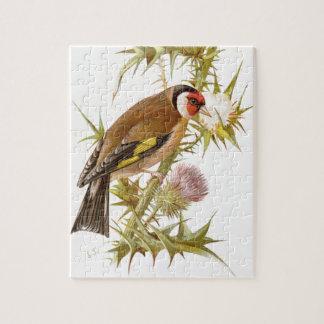 Relative Wild Birds Swaysland Goldfinch Puzzle