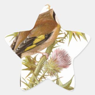 Relative Wild Birds Swaysland Goldfinch Star Sticker