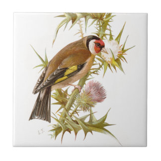 Relative Wild Birds Swaysland Goldfinch Small Square Tile