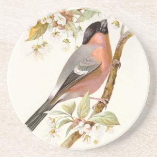 Relative Wild Birds Swaysland Great Bullfinch Drink Coaster