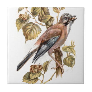 Relative Wild Birds Swaysland Jay Small Square Tile
