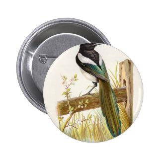 Relative Wild Birds Swaysland Magpie Pinback Button