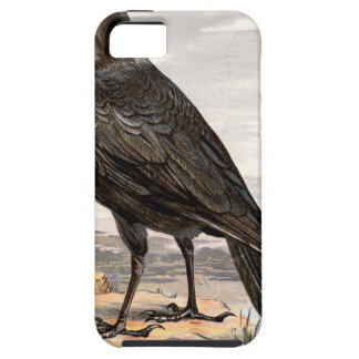 Relative Wild Birds Swaysland Raven iPhone SE/5/5s Case