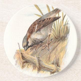 Relative Wild Birds Swaysland Sparrow Coaster