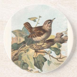Relative Wild Birds Swaysland Wren Drink Coaster