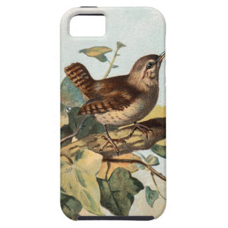 Relative Wild Birds Swaysland Wren iPhone SE/5/5s Case