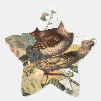 Relative Wild Birds Swaysland Wren Star Sticker