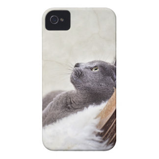Relax iPhone 4 Covers