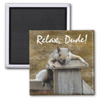 RELAX, DUDE! Squirrel Relaxing Critter Fun Magnet