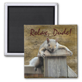 RELAX, DUDE! Squirrel Relaxing Critter Fun Magnet