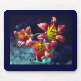 relax, enjoy, surf mouse pad