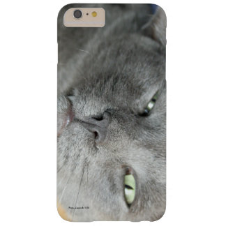 Relax! Grey Purring Cat Samsung Galaxy Nexus Case