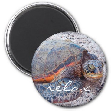 "Beach Themed ""Relax"" Hawaiian sea turtle close-up photo magnet"