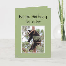 Relax it's Your Birthday Bear for Son-in-law Card