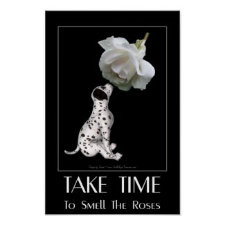 Take Time To Smell Roses Motivational Poster