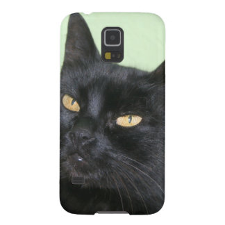 Relaxed Black Cat Portrait Galaxy S5 Case