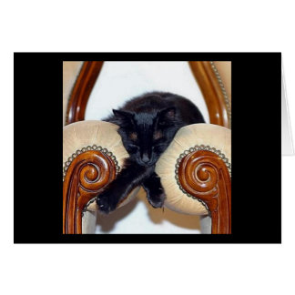 Relaxed Black Cat Sleeping Between Two Chairs Card