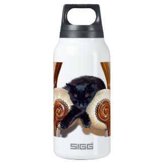 Relaxed Black Cat Sleeping Between Two Chairs Insulated Water Bottle
