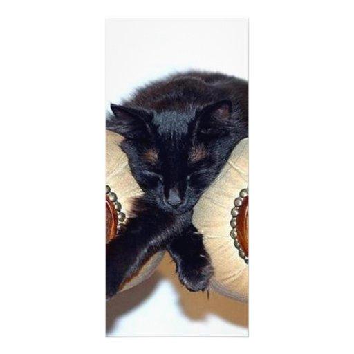Relaxed Black Cat Sleeping Between Two Chairs Custom Rack Card