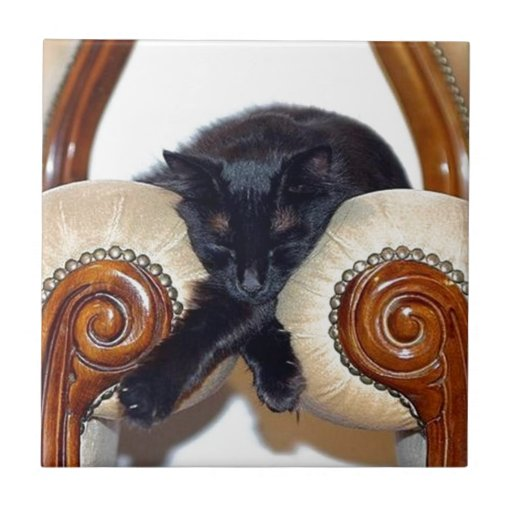 Relaxed Black Cat Sleeping Between Two Chairs Small Square Tile