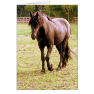 Relaxed Brown Horse Walking Card