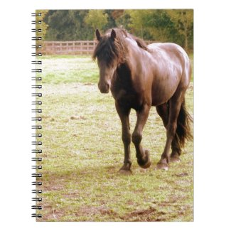 Relaxed Brown Horse Walking Notebook