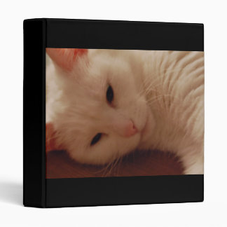Relaxed Kitty 3 Ring Binder