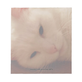 Relaxed Kitty Notepad