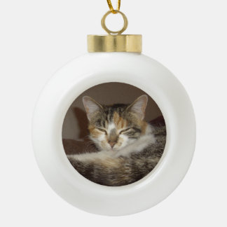 Relaxed Kitty Ornament