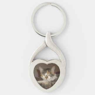 Relaxed Kitty Key Chains
