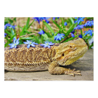 Relaxing Bearded Dragon Large Business Card