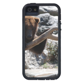 Relaxing Brown Bear iPhone 5 Case