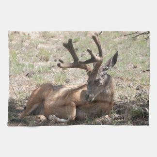 Relaxing Buck Kitchen Towel