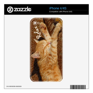 Relaxing Cat iPhone 4 Decal