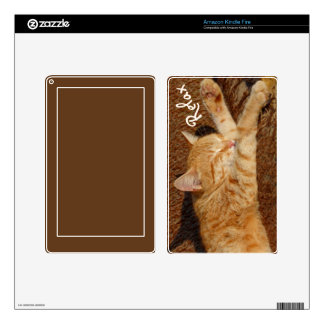Relaxing Cat Kindle Fire Skin