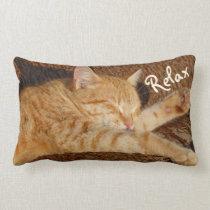 Relaxing Cat Lumbar Pillow