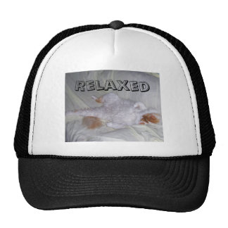 Relaxing Cat Mesh Hat