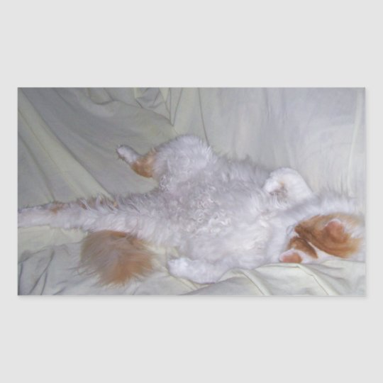 Relaxing Cat Rectangular Sticker