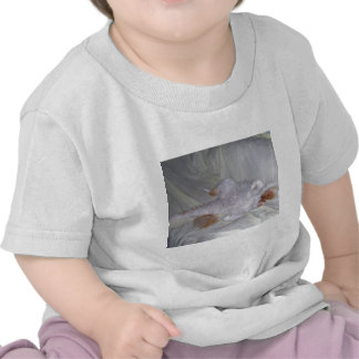Relaxing Cat Tshirt