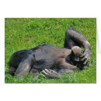Relaxing Chimpanzee - Greeting Card