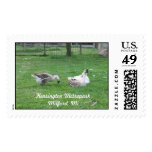 Relaxing Ducks Postage Stamps (LARGE)